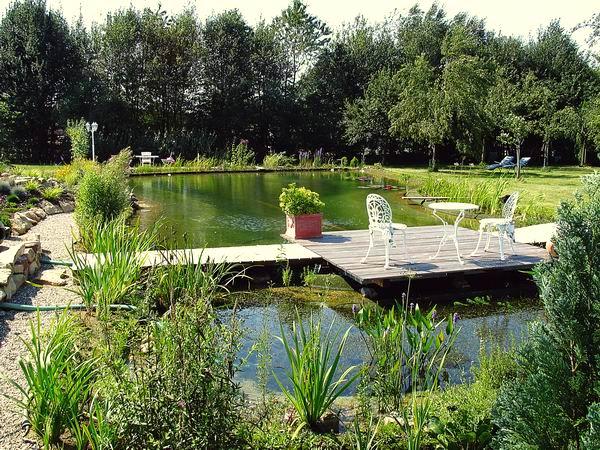 naturagart types of ponds. Black Bedroom Furniture Sets. Home Design Ideas